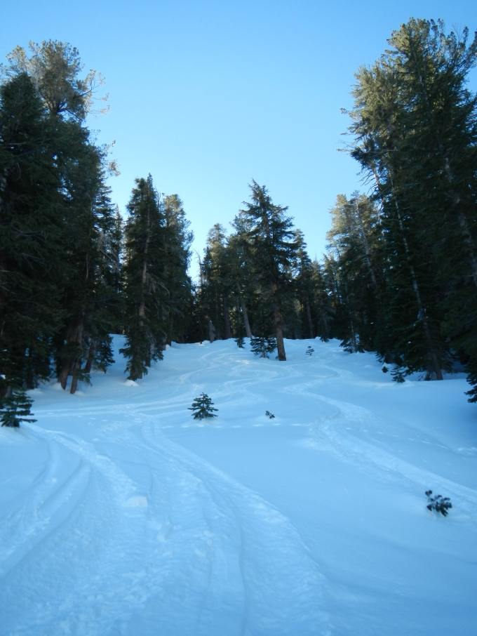 There were lots of tracks from skiers and boarders that had been here before us when the pow-pow was freshy.