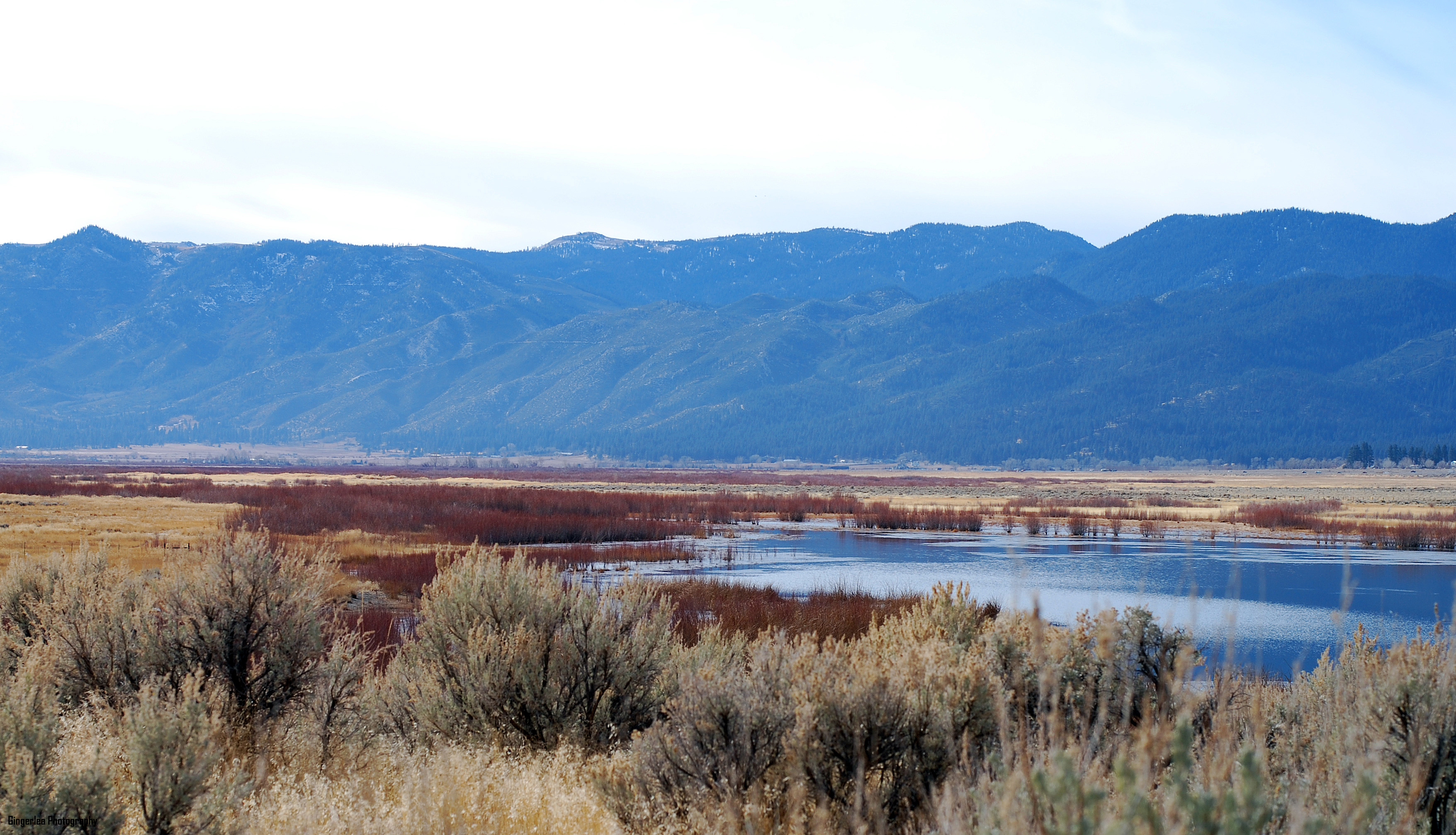 washoe valley Landwatch has 68 listings for sale in washoe valley, nv view listing photos, contact sellers, and use filters to find listings of land for sale .