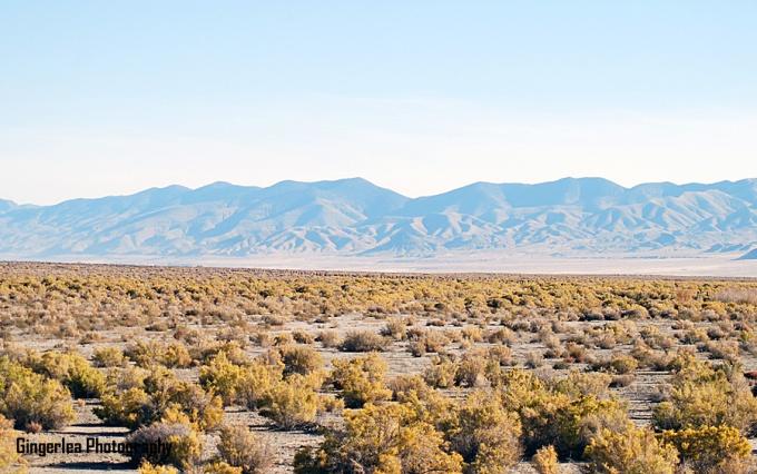 stillwater desert horizon