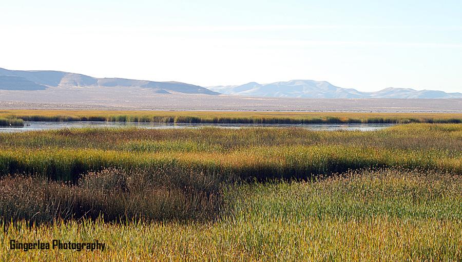 stillwater mtn horizon south entrance 2