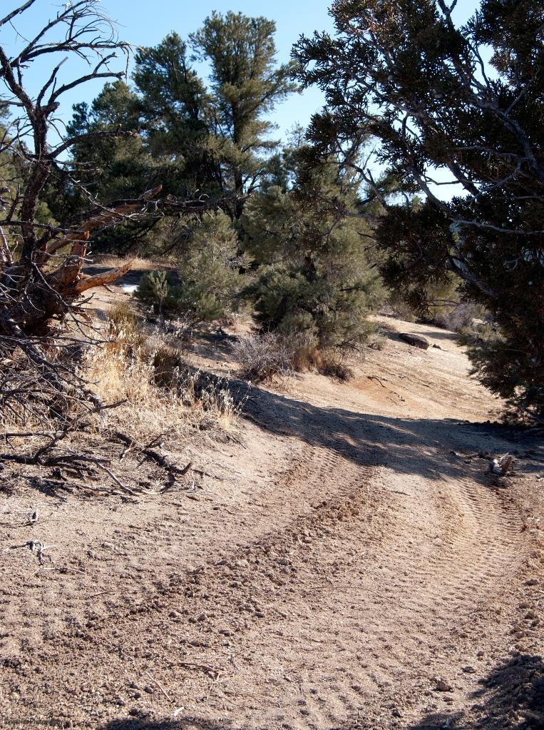 z quad trail closer tracks