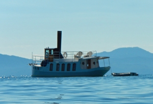 I loved this tug boat looking 'yacht.'
