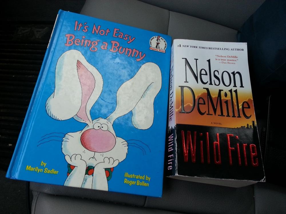 gingerlea little library books