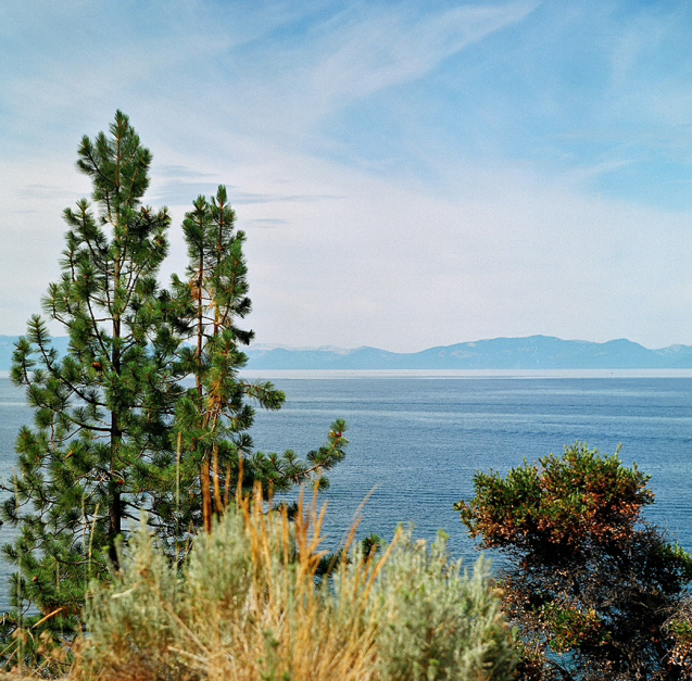 Pine trees, sagebrush and crystal blue, clear water